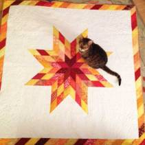 check the quilting!